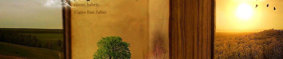 Jedes einzelne Buch hat eine Seele. Die Seele dessen, der es geschrieben hat, und die Seele derer, die es gelesen und erlebt und von ihm geträumt haben. (Carlos Ruiz Zafón)