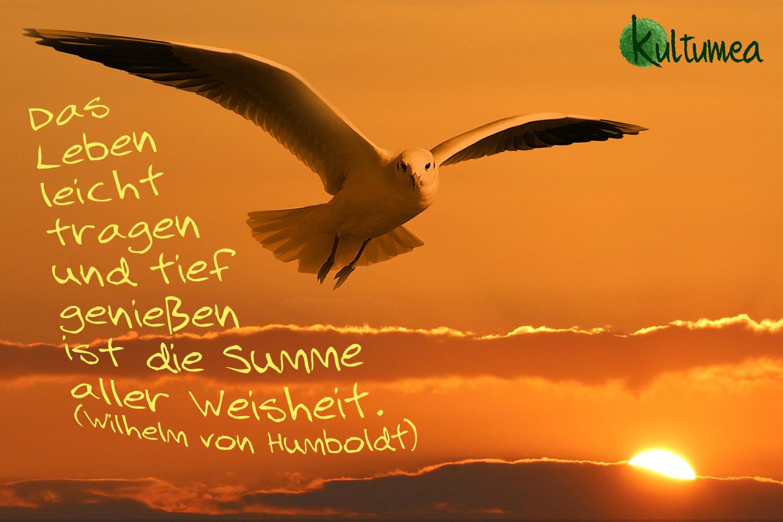 Das Leben leicht tragen und tief genießen ist die Summe aller Weisheit. (Wilhelm von Humboldt)