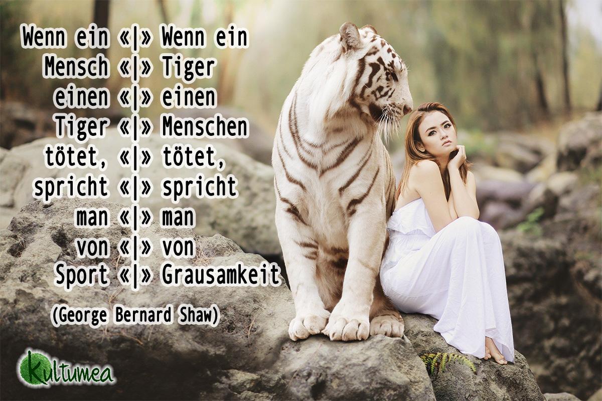 Wenn ein Mensch einen Tiger tötet, spricht man von Sport. Wenn ein Tiger einen Menschen tötet, spricht man von Grausamkeit. (George Bernard Shaw)