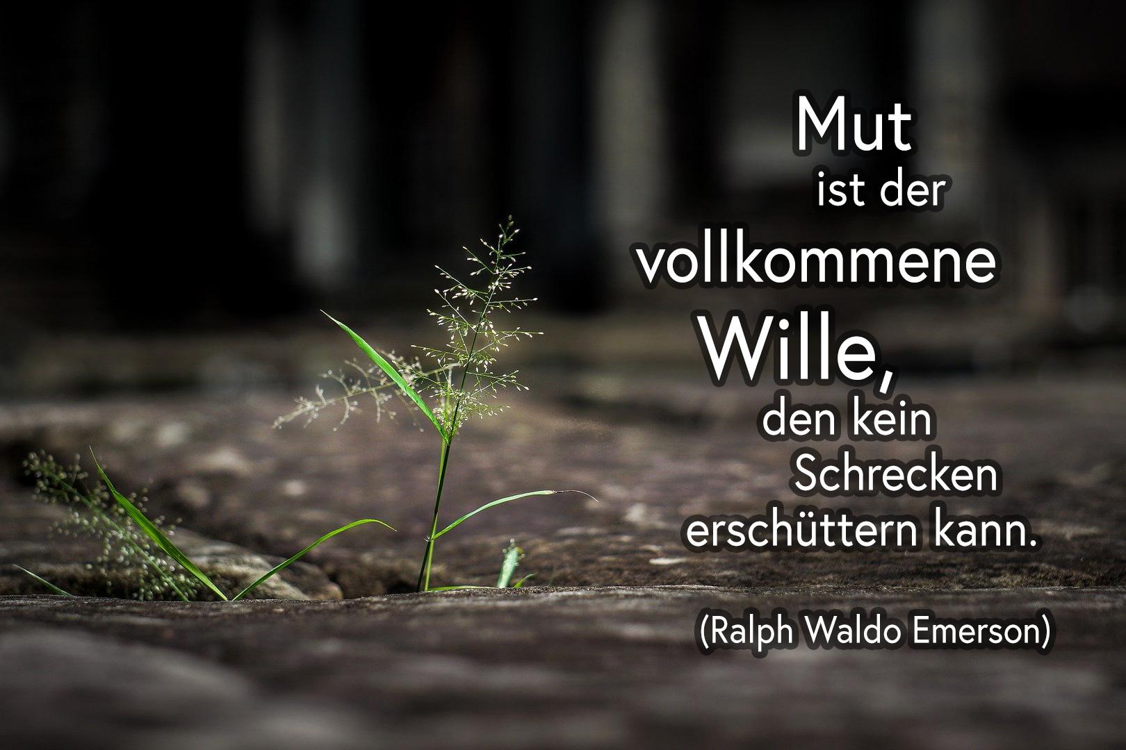 Mut ist der vollkommene Wille, den kein Schrecken erschüttern kann - Ralph Waldo Emerson