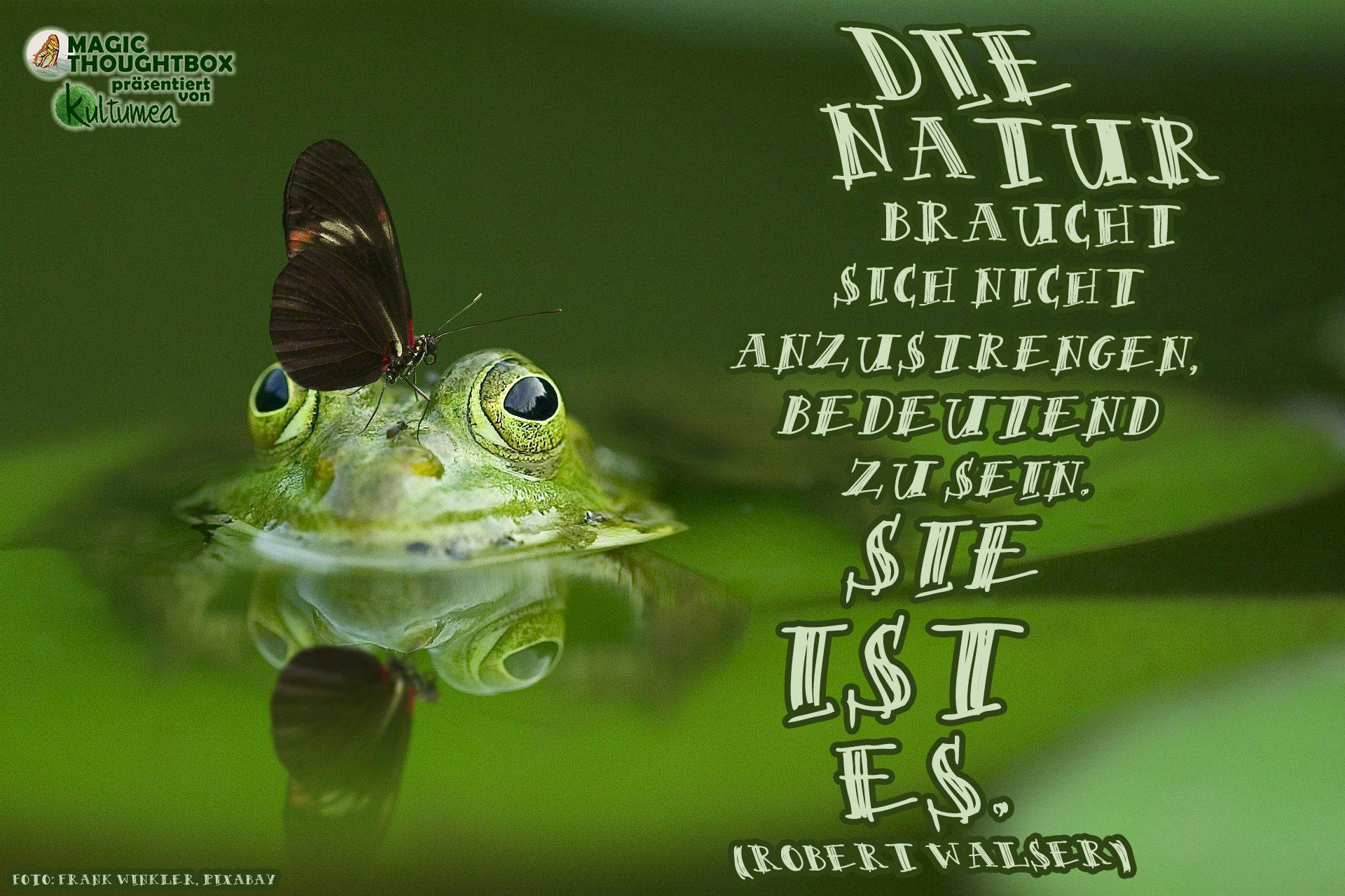 Die Natur braucht sich nicht anzustrengen, bedeutend zu sein. Sie ist es. (Robert Walser)